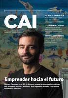 CAI_1131-1